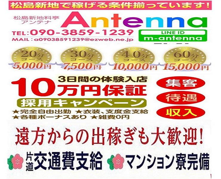 アンテナ2月の新着001
