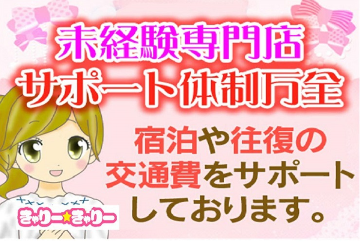キヤリー☆キヤリー00456